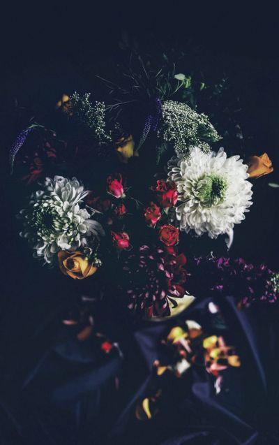 Botanical Stories 002