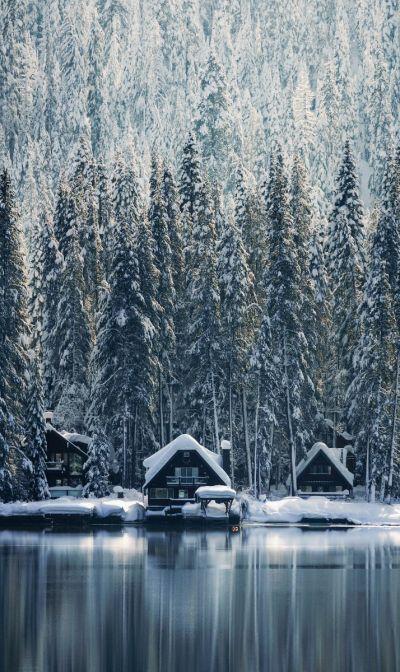 Winter Wonders 001