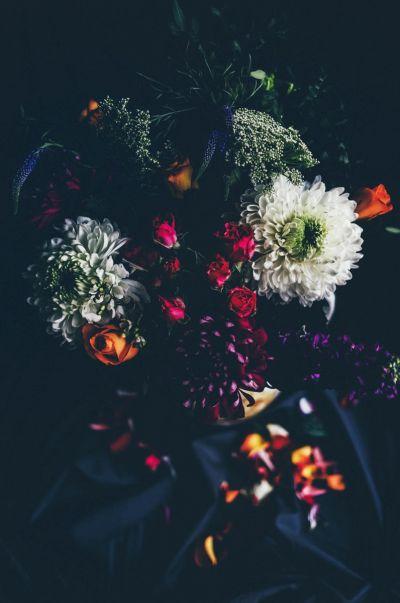 Botanical Stories 011
